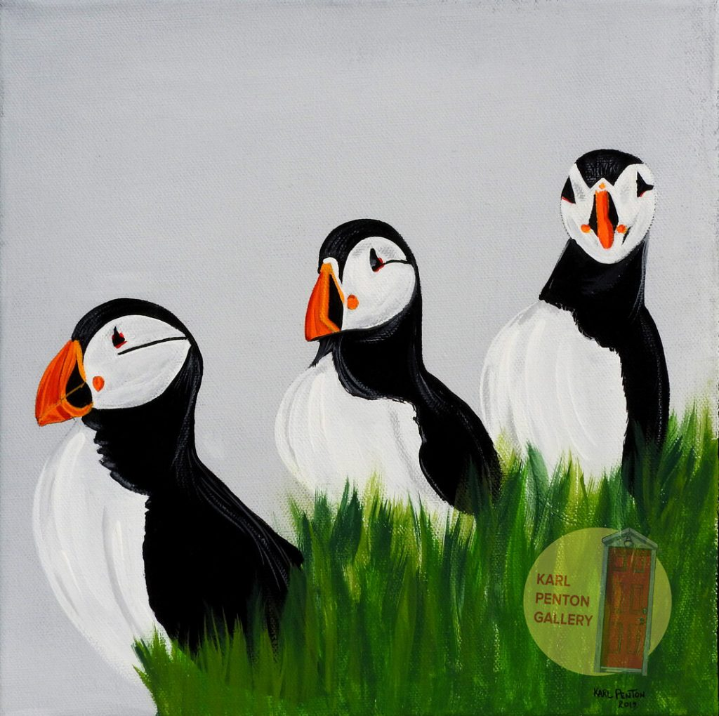 Grey Puffin canvas painting by Karl Penton